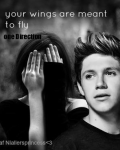 Your wings are ment to fly *One Direction*