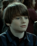 The Life of Albus Severus Potter *Harry Potter FanFiction*