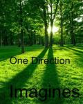 One Direction;Imagines