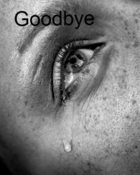 Goodbye (poetry cometition)