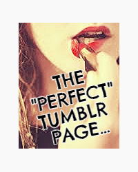 "The ""Perfect""Tumblr Page"