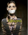 Kidnapped (1D FANFIC)