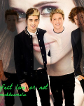 The perfect life or not - 1D
