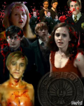 How to survive the Hunger Games in the magical world - HP/THG