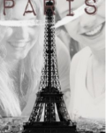 Take A Trip To Paris - A One Direction Fanfiction