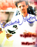 Coincidental Meeting (A Louis Tomlinson Fanfic)