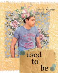 Used To Be - One Direction 13+