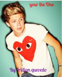 Your the One ( A Niall Horan Love story)
