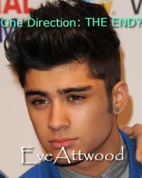 One Direction: THE END