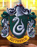 The Slytherin Scandal: Year One