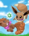 I'm a pokemon? (pokemon mystery dungeon fanfic)