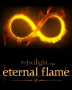 Eternal Flame (Book 1)