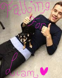 Falling for Liam(Liam Payne love story)