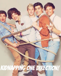 Kidnapping one direction
