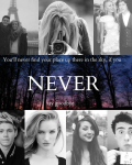 Never {One Direction}