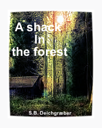 A Shack in the forest - James Henly Lupínius