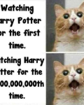 That Moment... Harry Potter Edition
