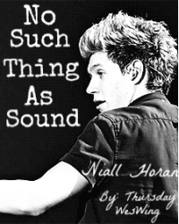 No Such Thing As Sound *Niall Horan*