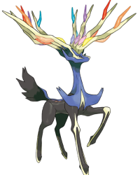 Adventures in Kalos!!!: Pokemon X