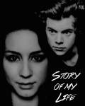 Story Of My Life - Harry Styles