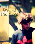 Shot at the Night (Louis)