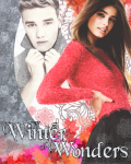Winter of Wonders ❅ Liam Payne