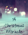 A Christmas Miracle ~1D Fanfic~