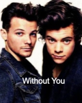 Without you (A Louis Tomlinson Fanfic)