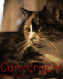 Convergent (Winner of the Divergent Competition)