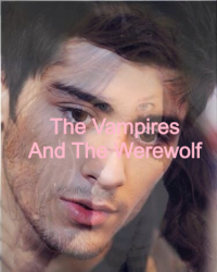 The Vampires and The Werewolf (1D Fanfiction)