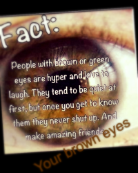 Your brown eyes (a louis tomlinson fanfic)