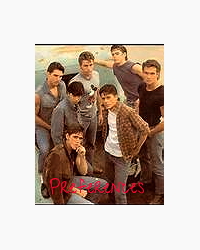 The Outsiders Preferences - A/N - Movellas