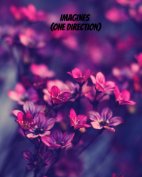 Imagines and prefrences (One direction)