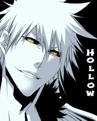 Hollow *One Shot*