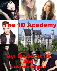 The One Direction Academy
