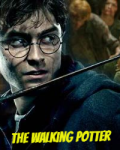 The Walking Potter