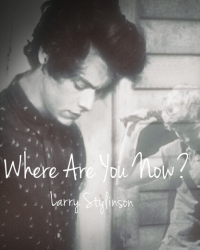 Where Are You Now? - Larry Stylinson
