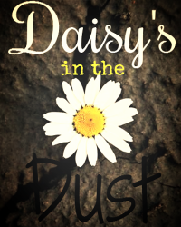Daisy's in the dust