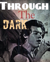 Through The Dark (Harry Styles fanfiction)