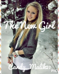 The New Girl (One Direction Fanfiction)
