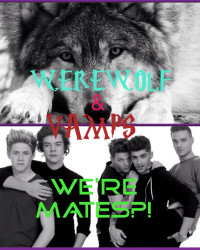 WE'RE MATES?! *werewolf/vamps* 1D