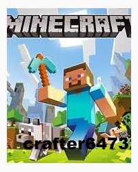 Minecraft: Journey to the End