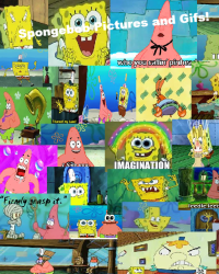 Spongebob Gifs and Pictures!