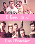 5 Seconds of One Direction