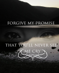 Forgive my promise
