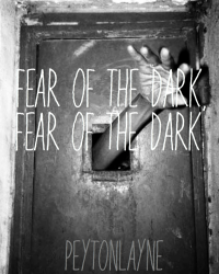Fear of the Dark, Fear of the Dark