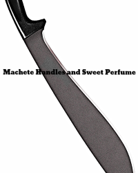Machete Handles and Sweet Perfume