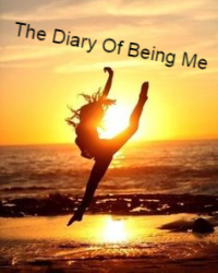The Diary Of Being Me