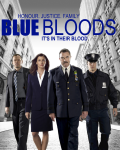 2 Families, One Goal (Blue Bloods Fanfiction)