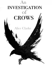 An Investigation of Crows